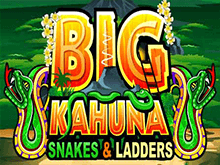 Играть Big Kahuna Snakes And Ladders онлайн